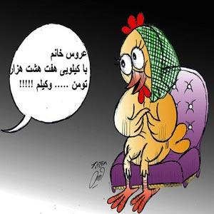 گرانی مرغ