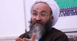 نماینده مردم خوزستان در مجلس خبرگان رهبری: انتقال آب دلیل اصلی کم آبی در خوزستان است