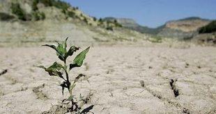 ایران درحال خشکشدن است/ استانهای شمالی ایران دچار خشکسالی شدهاند