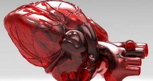 تشخیص بیماری های قلبی ژنتیکی با سلول های بنیادی