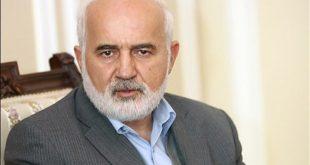 توکلی: علیه سیف اعلام جرم کردهایم؛ دولت باید او را عزل کند
