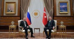 اردوغان و پوتین در حاشیه نشست بریکس دیدار میکنند