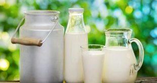 ستاد تنظیم بازار با افزایش قیمت خرید شیرخام موافقت کرد/ تلاش وزیر جهادکشاورزی برای افزایش بیشتر قیمت شیرخام