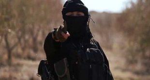 تایید حکم ۲ نفر از اعضای گروه تروریستی داعش در کرمان