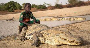 دوستی پسر بچه با یک تمساح