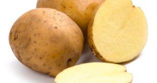 حقایق جالب درباره سیب زمینی