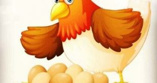 معرفی بازی یک مرغ دارم
