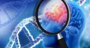فاکتورهای پرخطری که ریسک زوال عقل را افزایش می دهند
