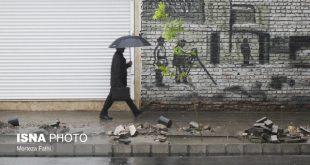رگبار باران در شمال/ رعد و برق در جنوب کشور