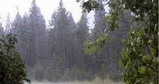 رگبار باران، کاهش دما و وزش باد شدید در راه/هواشناسی نسبت به احتمال طغیان رودخانهها هشدار داد