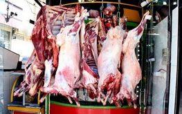 تولید گوشت گوساله بیشتر بود یا گوسفند؟/ کاهش ٤ درصدی تولید گوشت در کشتارگاههای رسمی