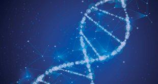 ویرایش ژن، راهکار محققان برای درمان افسردگی
