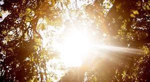 پیش بینی آسمان صاف برای همه مناطق کشور به جز زابل