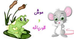دوستي موش و قورباغه