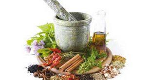 با مسکن های گیاهی در طب سنتی آشنا شوید
