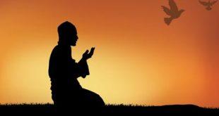 طریقهی خواندن نماز چهارده معصوم(ع)