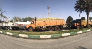 شلیک به کامیونهای حامل بار در استان فارس