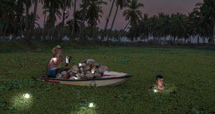 تصاویر برگزیده مسابقه سالانه عکس زمین