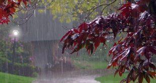 بارندگی ها در کشور تا چهارشنبه ادامه دارد
