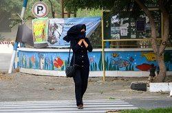 وزش باد شدید و تندباد لحظهای در تهران