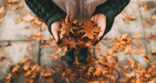 اس ام اس فصل پاییز (8)