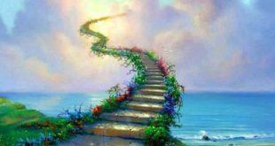 تنها راه ورود بشر به بهشت