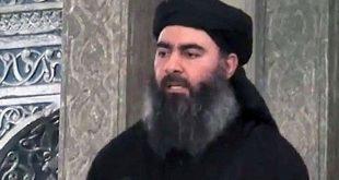 دستور ابوبکر البغدادی برای اعدام 320 داعشی در سوریه و عراق