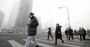 سرعت رشد سرطان در ایران بالاست/نقش آلودگی هوا و غذا