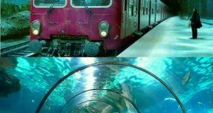 زیباترین راه آبی جهان (+عکس)