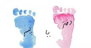 تعیین جنسیت جنین به سبک ابن سینا