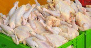 گوشت مرغ در صدر افزایش قیمت کالاهای اساسی در آذر ماه