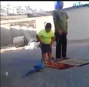 طنز نماز خواندن