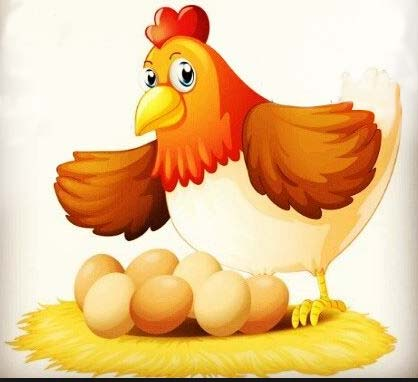 introduction-play-chicken22.jpg