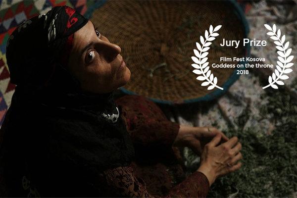 فیلم «فروزان» برنده جایزه ویژه هیات داوران جشنواره کوزوو