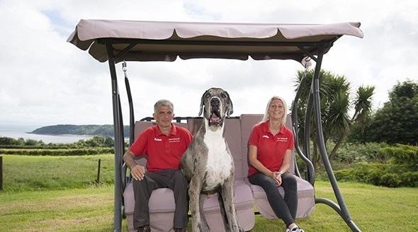 Photo of بزرگ ترین سگ دنیا (+تصاویر)