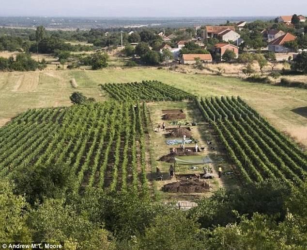 بقایای پنیر ۷۲۰۰ ساله در کرواسی کشف شد. (+تصاویر)