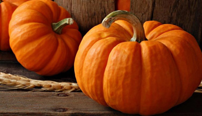 pumpkin3-properties1.jpg