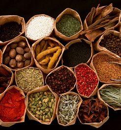 کتاب کامل گیاهان دارویی pdf در 8 جلد