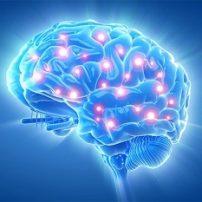 کارگاه ذهن آگاهی