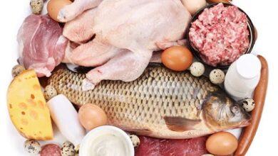 خرید آنلاین محصولات پروتئینی